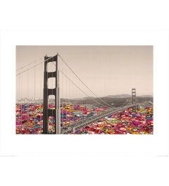 San Francisco - Blumen