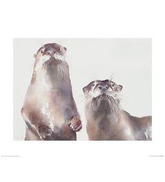 Zwei Fischotter Art Print Aimee Del Valle 40x50cm