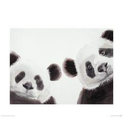 Zwei Große Pandas Art Print Aimee Del Valle 40x50cm