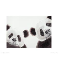 Zwei Große Pandas Art Print Aimee Del Valle 30x40cm