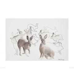 Springende Hasen Art Print Aimee Del Valle 60x80cm