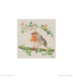 Rotkehlchen Art Print Jane Bannon 30x30cm