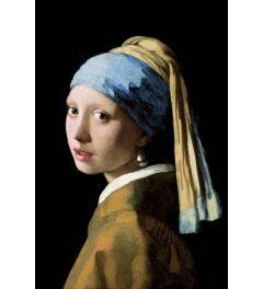 Das Mädchen mit dem Perlenohrgehänge von Johannes Vermeer Poster 61x91.5cm