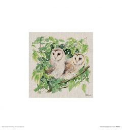 Zwei Eulen Art Print Jane Bannon 30x30cm