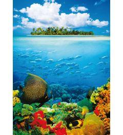 Tropisch Eiland
