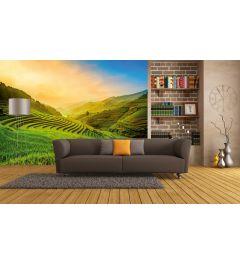 Terrassenförmig Reisfeld Fototapete In Vietnam 4-teilige 368x254cm