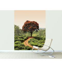 Roter Baum Und Hügel in Sri Lanka Fototapete 2-teilig 184x254cm