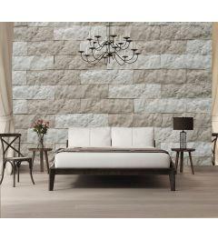 Gelbe Steinmauer Fototapete 4-teilig 368x254cm